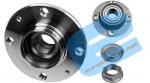 ECC374870 - Rear Wheel Bearing and Hub